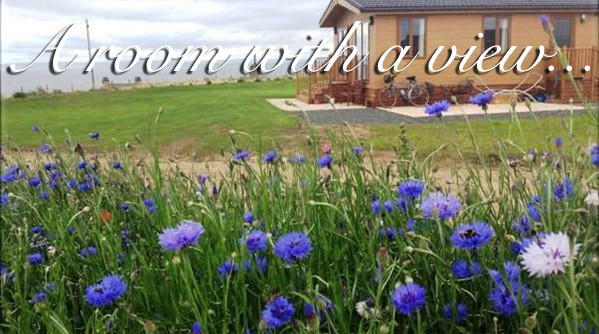 A luxury lodge with a sea view at Silverdyke Park with text saying a room with a view