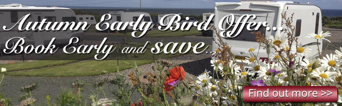 Picture of tourers and flowers at Silverdyke Caravan Park with text saying Autumn Early Bird Offer Book Early and Save...