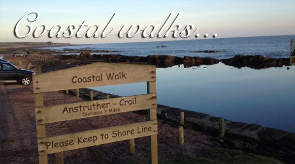 Fife coast with text saying coastal walks