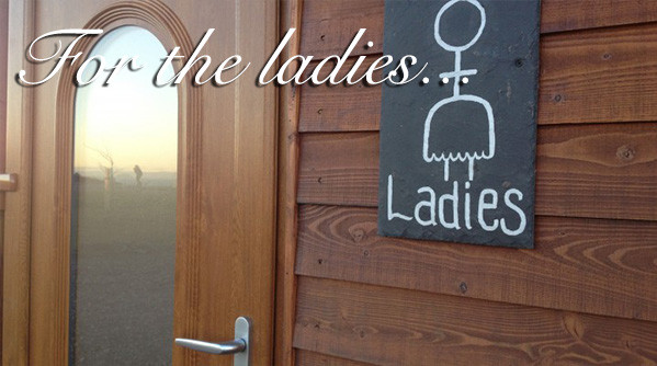Exterior of the ladies at Silverdyke Park with text saying for the ladies