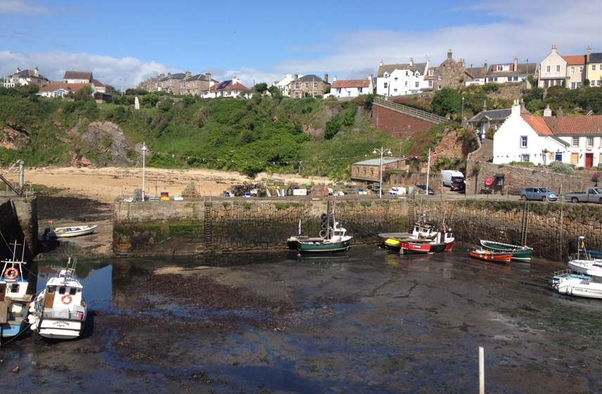 Photo of Crail harbour and boats with houses on hill behind