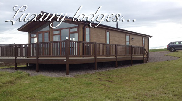 Exterior of a lodge at Silverdyke Park with text saying luxury lodges