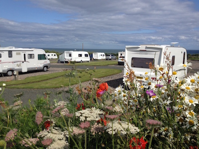 Tourer caravans at Silverdyke Park with flowers in foreground